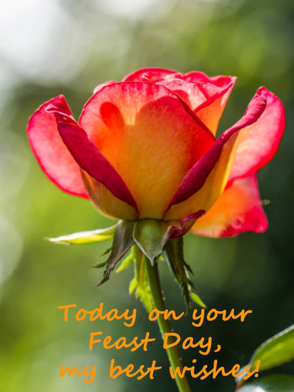 Cstss greetings cards today on your feast day my best wishes m4hsunfo Images