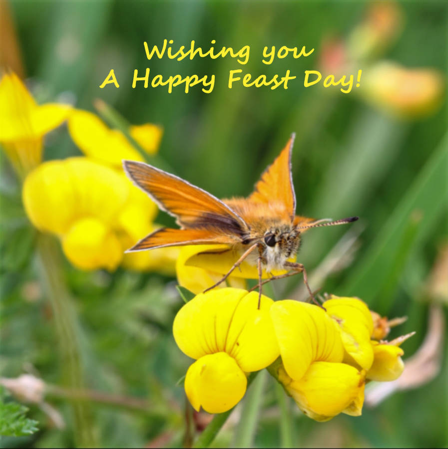 Cstss greetings cards wishing you a happy feast day m4hsunfo