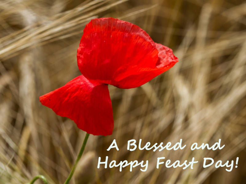 Cstss greetings cards a blessed and happy feast day m4hsunfo